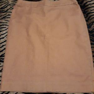 Camel Knee Length Skirt
